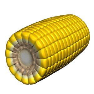 3d corn